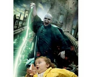 funny, girl, and harry potter image