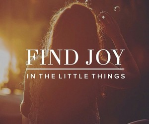 quote, life, and joy image