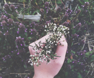 flowers, spring vibes, and grass image