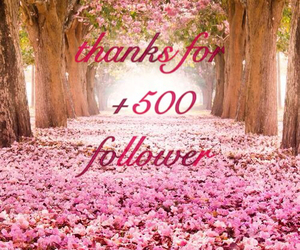 amazing, love you, and +500 follower image