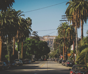 hollywood and summer image