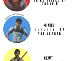 the maze runner, book, and Minho image
