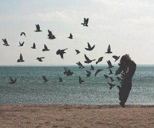 bird, girl, and sea image