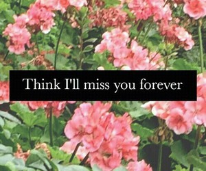 flowers, forever, and quotes image