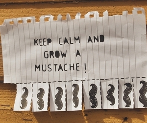 mustache, photography, and tumbl image