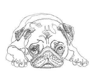 pug and drawing image