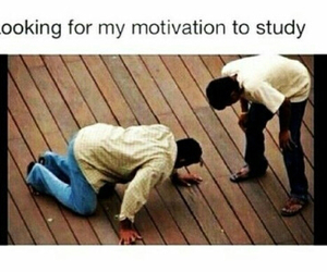 funny, study, and motivation image