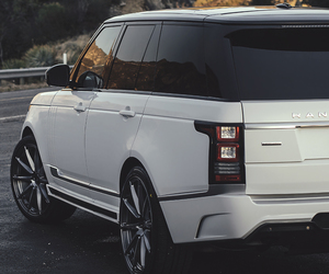 car, white, and range rover image