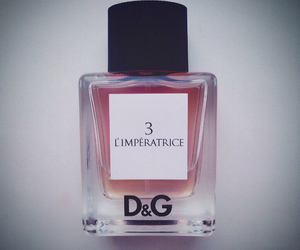 beautiful, D&G, and dolce image