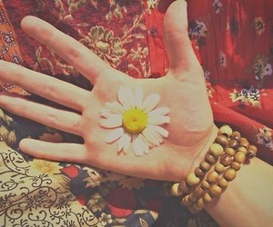 flowers, hippie, and daisy image