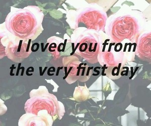 flowers, quotes, and roses image