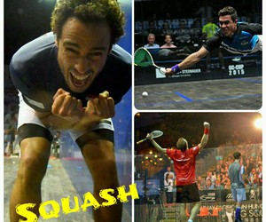 squash, best sport ever, and nick matthew image