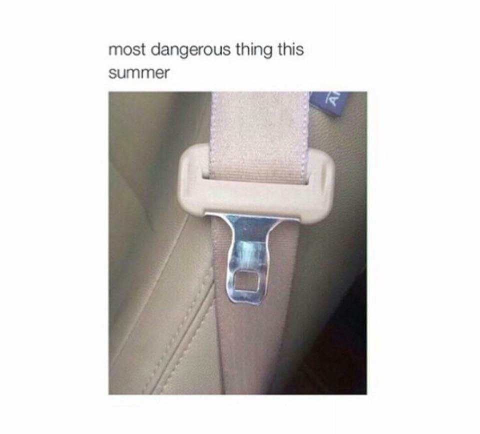 funny, summer, and car image