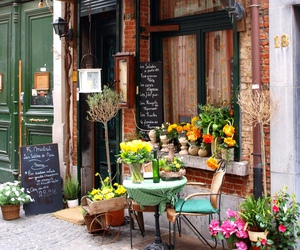 flowers, travel, and paris image