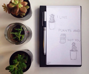 nature, plants, and notebook image