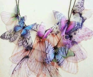 buterfly and collier image