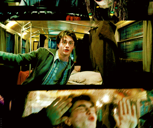 beautiful, harry potter, and harry image