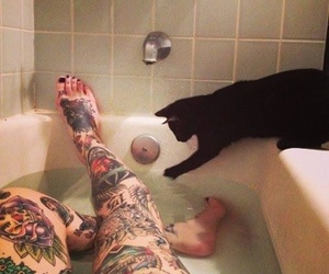 bathtub, cat, and water image