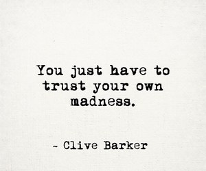 madness, quote, and trust image