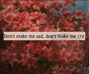 cry, quote, and flowers image