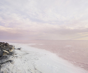 beach, sea, and pink image