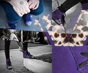 animal, shoes, and macbeth image