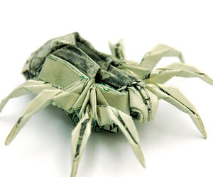 art, dollar, and spider image