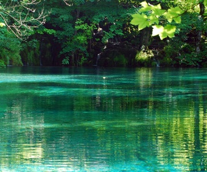 summer, water, and green image