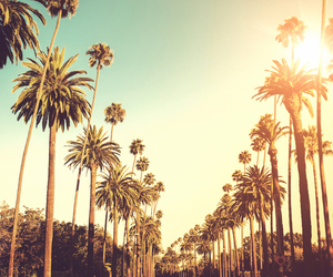 summer, sun, and los angeles image