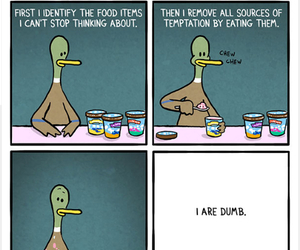 diet, food, and funny image