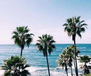 amazing, photo, and beach image