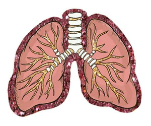 lungs, overlay, and glitter image