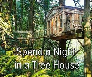 bucketlist, tree house, and night image