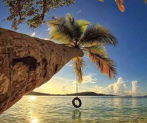 beach, tropical, and outdoors image