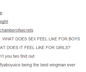 sex, tumblr, and funny daily image
