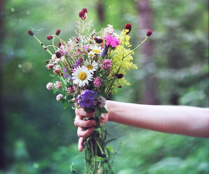 bouquet, nature, and flowers image