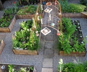garden and vege image