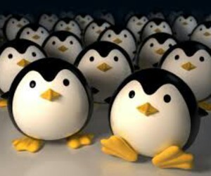 pinguins and cute image
