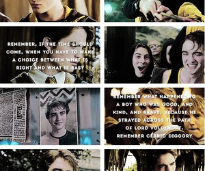 cedric diggory, edward, and fight image