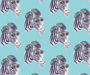 wallpaper and zebra image
