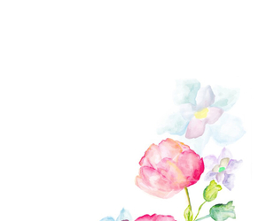 flower, pink, and watercolor image