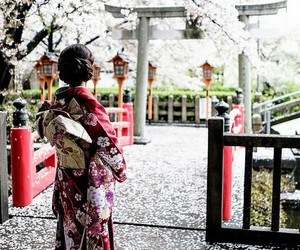 geisha, japan, and nature image