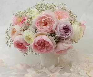 botanical, delicate, and gift image