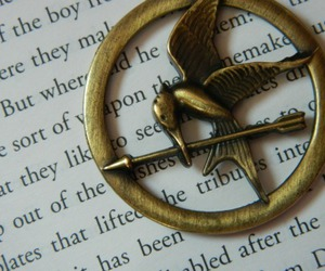 the hunger games, sinsajo, and book image
