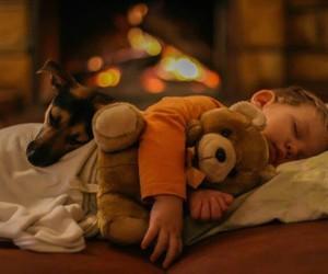 boy, dog, and night image