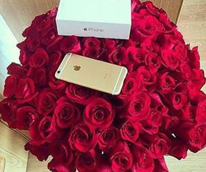 iphone, rose, and red image