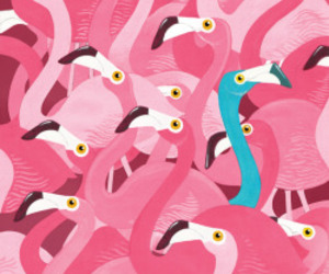 pink, flamingo, and blue image