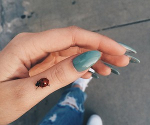 nails, ladybug, and blue image