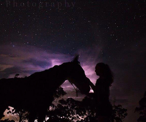 beautiful, edit, and horse image
