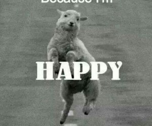 happy and funny image